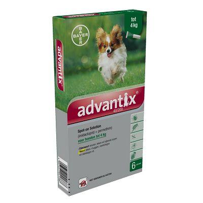 Bayer Advantix XS // manje od 4kg