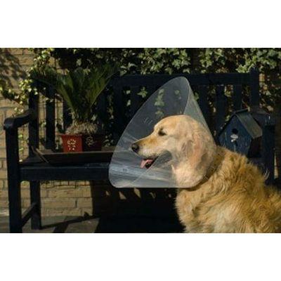 Beeztess zaštitna kragna za psa 38-44x20cm