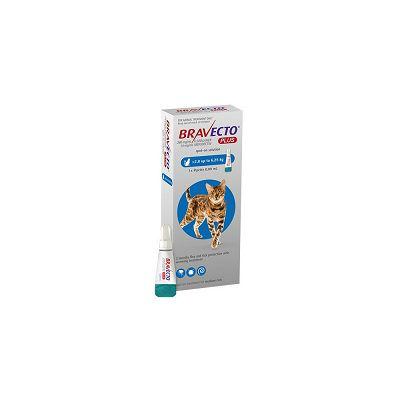 Bravecto plus // za mačke težine 2,8 - 6,25kg jedna ampula 250mg