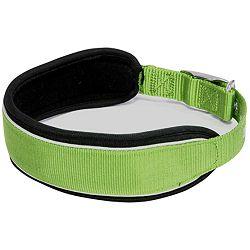 Croci Hiking ogrlica za psa 51-60cm L zelena