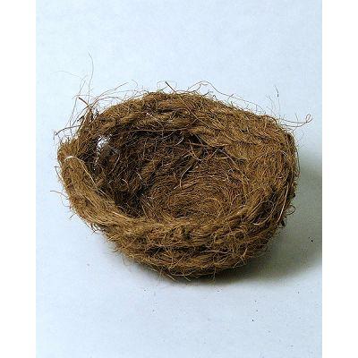 Domus Molinari gnijezdo