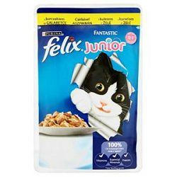 FELIX Fantastic Junior vrećica za mačke, Piletina 100 g