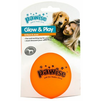 Pawise Glow n Play lopta igračka za psa S