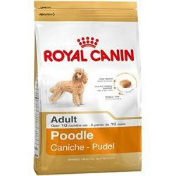 Royal Canin / Adult POODLE 1,5kg