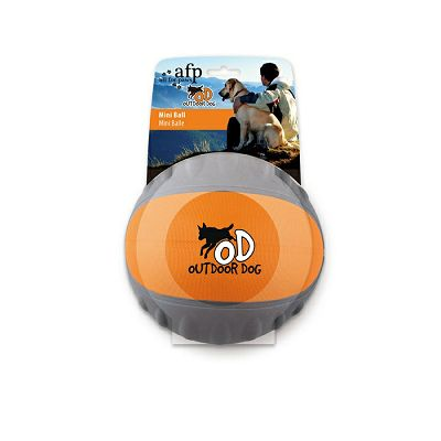 all-for-paws-mini-ball-igracka-za-psa-847922084561_1.jpg