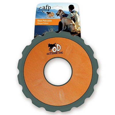 All For Paws Outdoor Dog - Flyer Orange