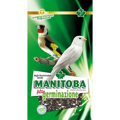 Manitoba Germinazione sjeme za klijanje, 2.5 kg