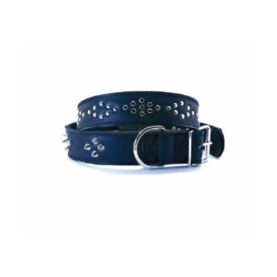 Ogrlica za psa sa bodljama