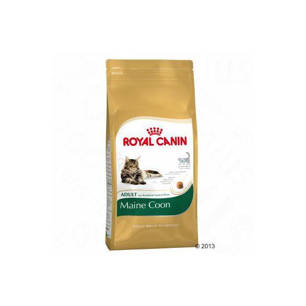 royal-canin-maine-coon-adult-2-kg-3182550710640_1.jpg